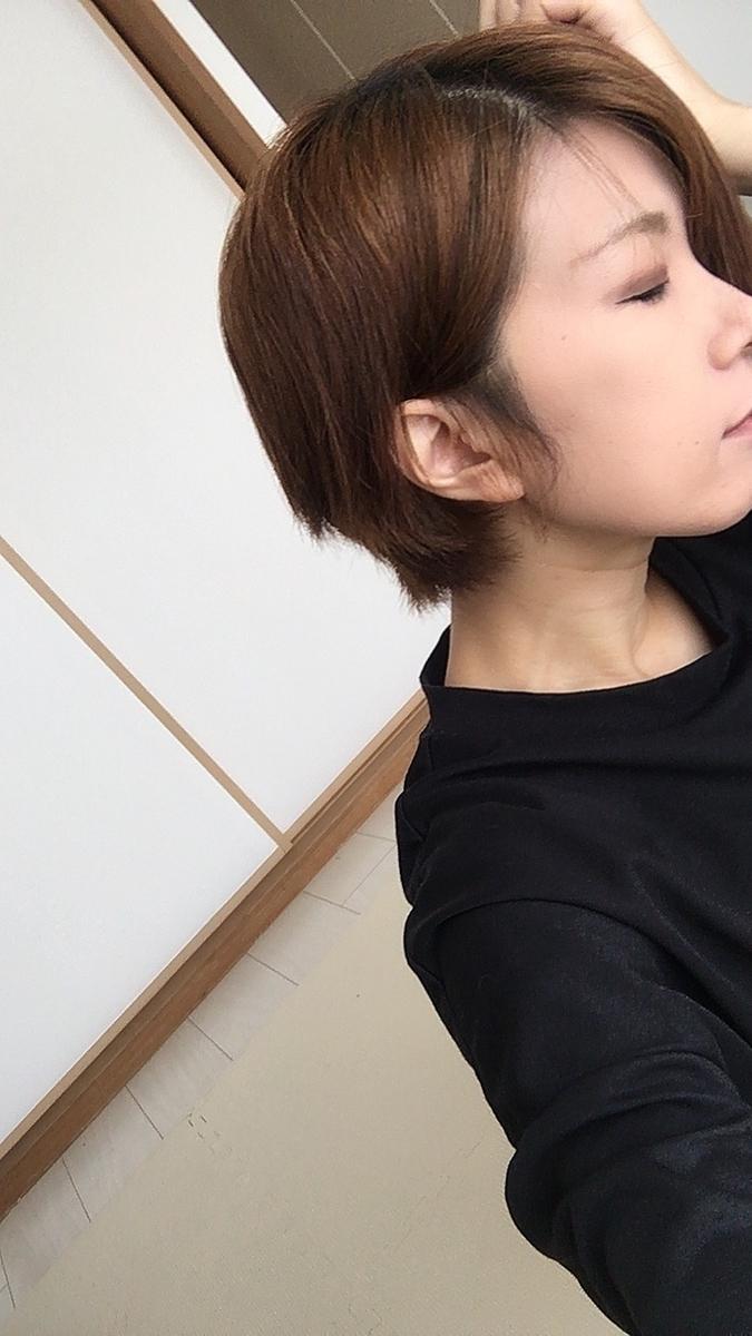 f:id:kanzakisatuki:20210905174440j:plain