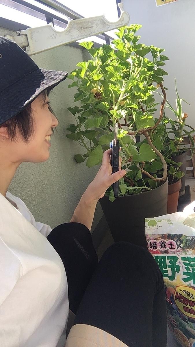 f:id:kanzakisatuki:20210930215211j:plain