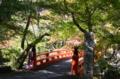 『京都新聞写真コンテスト 秋の西明寺』