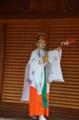 『京都新聞写真コンテスト 梅の舞』