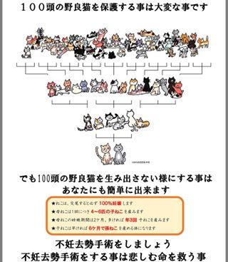 f:id:kaochan0801:20180719141209j:plain