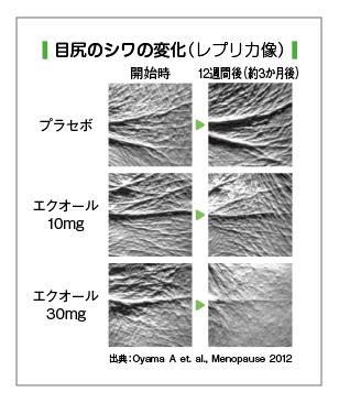 f:id:kaokao8:20200716165200p:plain