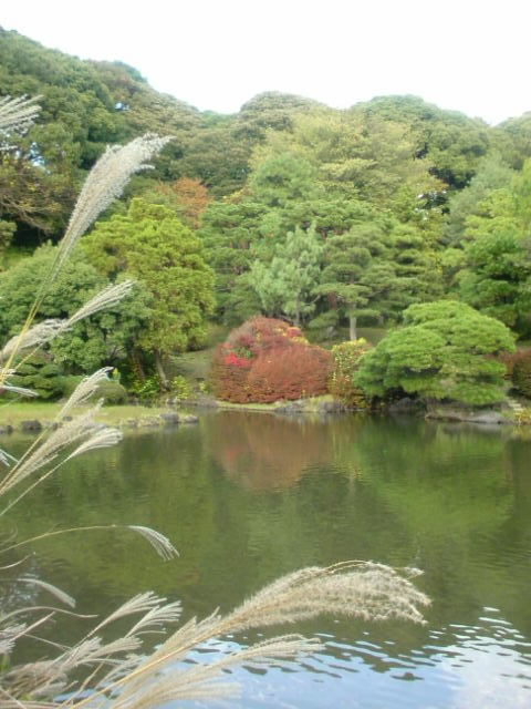 f:id:kaon-yokegawa:20171103154713j:plain