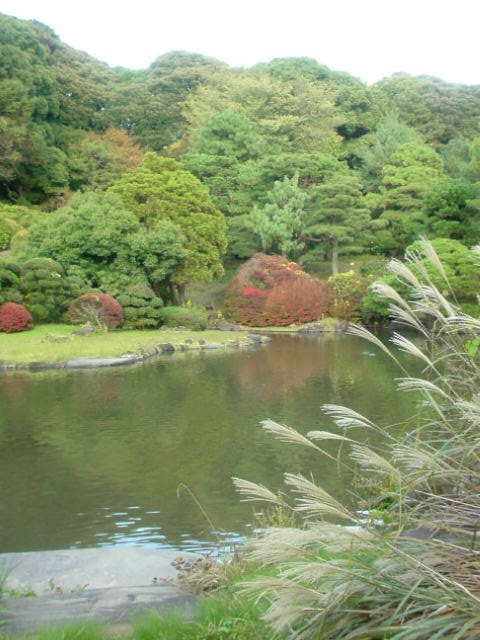 f:id:kaon-yokegawa:20171103154837j:plain