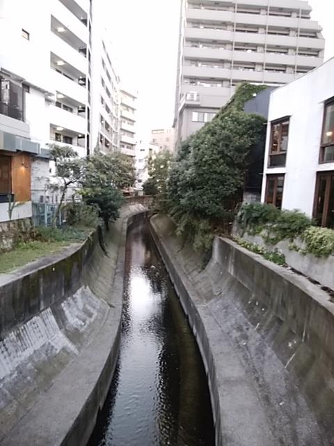 f:id:kaon-yokegawa:20181006165426j:plain