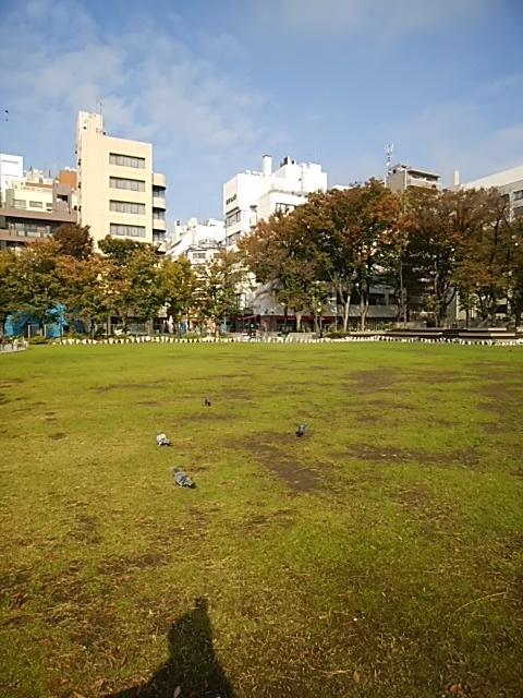 f:id:kaon-yokegawa:20181105092751j:plain