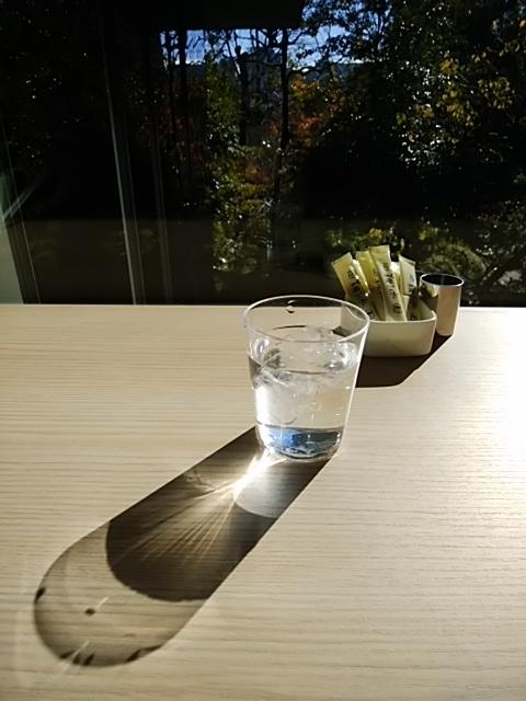 f:id:kaon-yokegawa:20181215110613j:plain
