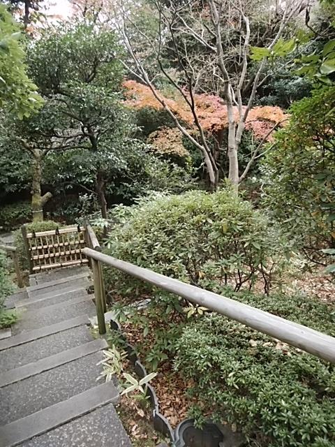 f:id:kaon-yokegawa:20181216111807j:plain