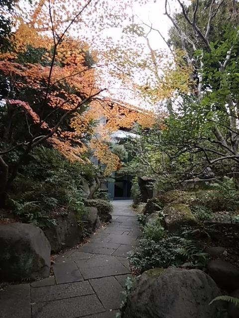 f:id:kaon-yokegawa:20181216111919j:plain