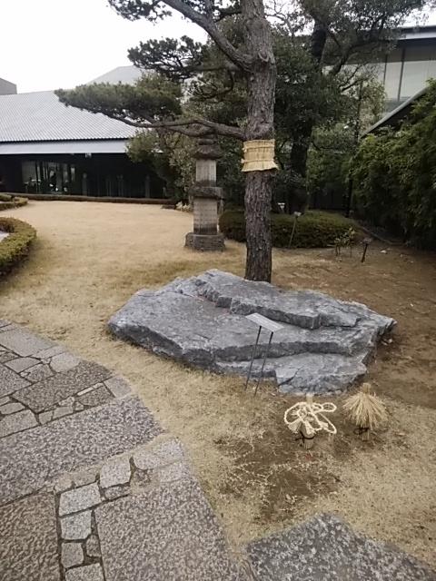 f:id:kaon-yokegawa:20190110125208j:plain