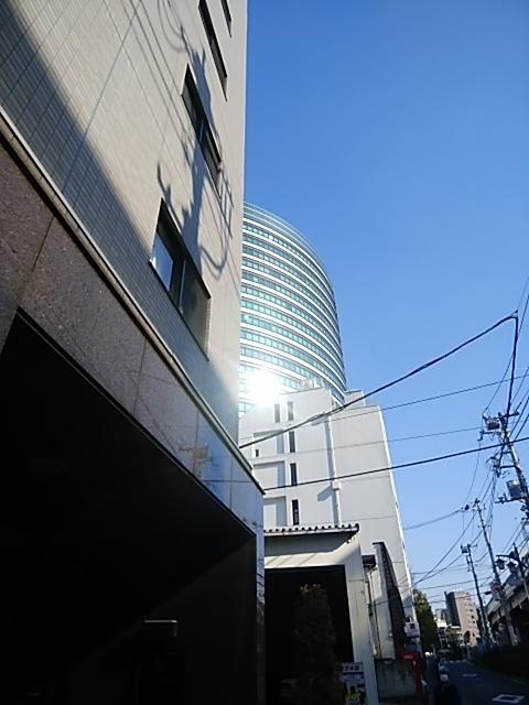 f:id:kaon-yokegawa:20190117131731j:plain