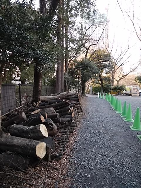 f:id:kaon-yokegawa:20190120155457j:plain