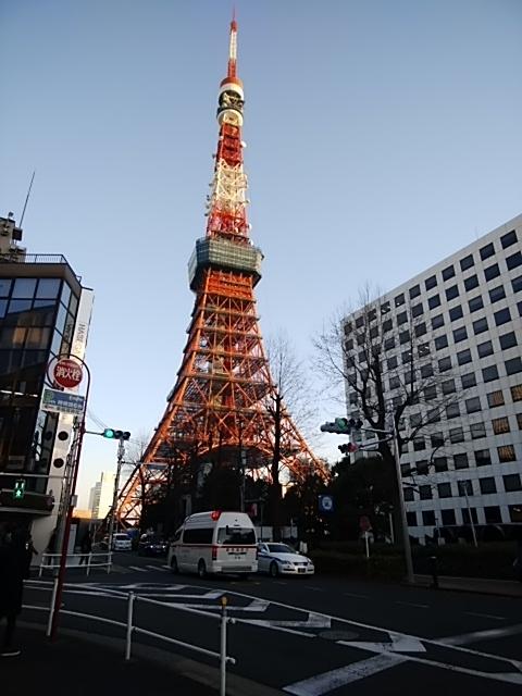 f:id:kaon-yokegawa:20190120162439j:plain
