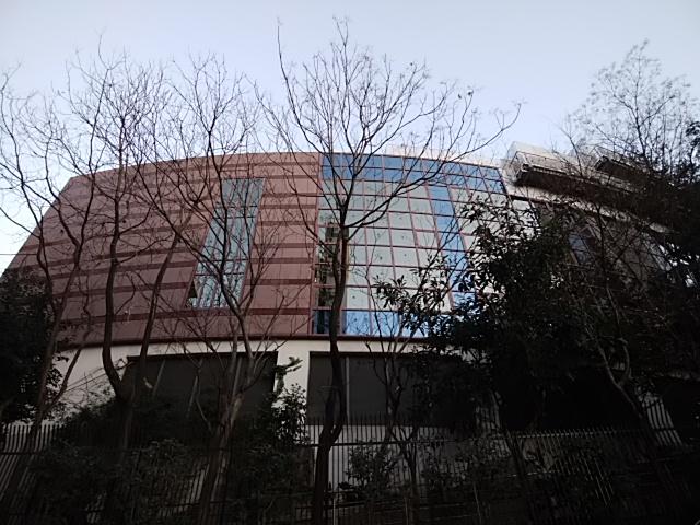 f:id:kaon-yokegawa:20190120163304j:plain