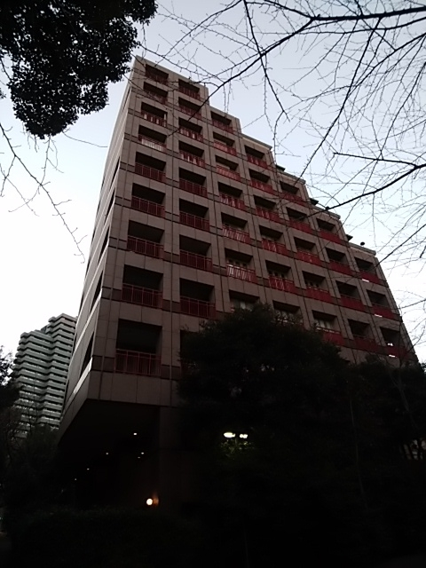 f:id:kaon-yokegawa:20190120164631j:plain