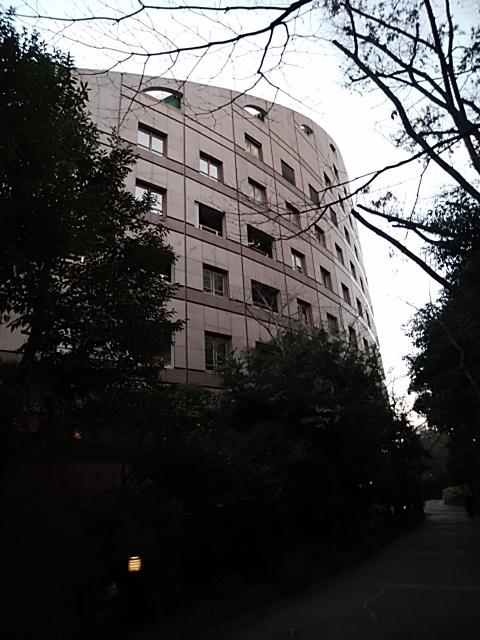 f:id:kaon-yokegawa:20190120164738j:plain
