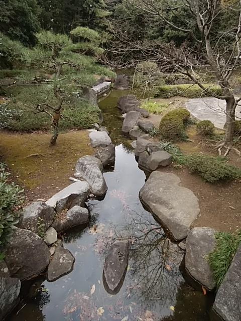 f:id:kaon-yokegawa:20190208115612j:plain