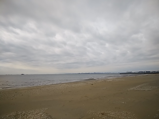f:id:kaon-yokegawa:20190208123737j:plain