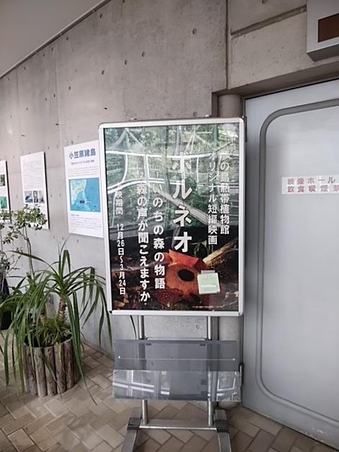f:id:kaon-yokegawa:20190216114144j:plain