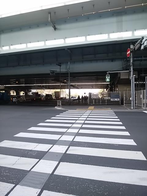 f:id:kaon-yokegawa:20190216132956j:plain