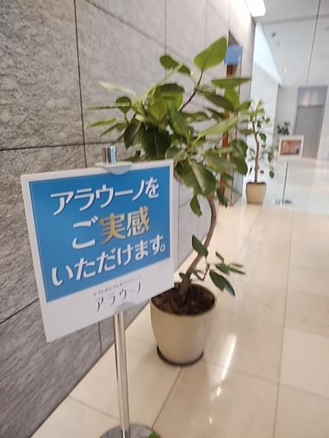 f:id:kaon-yokegawa:20190218141014j:plain