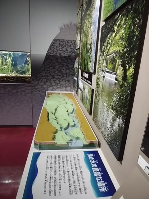 f:id:kaon-yokegawa:20190222152949j:plain