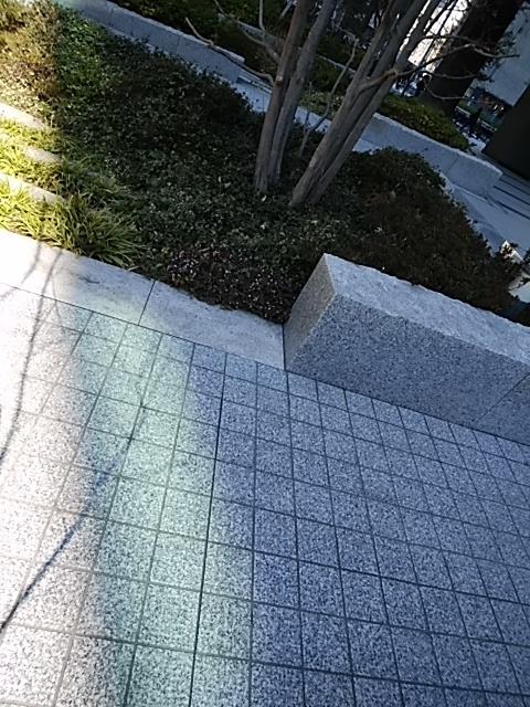 f:id:kaon-yokegawa:20190314103705j:plain