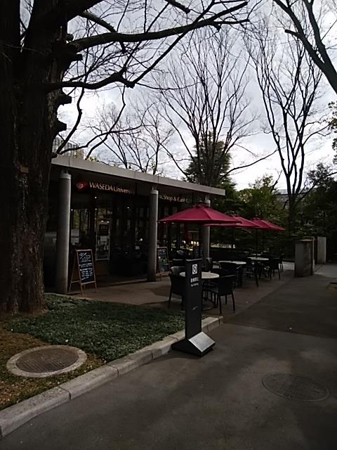 f:id:kaon-yokegawa:20190321092829j:plain