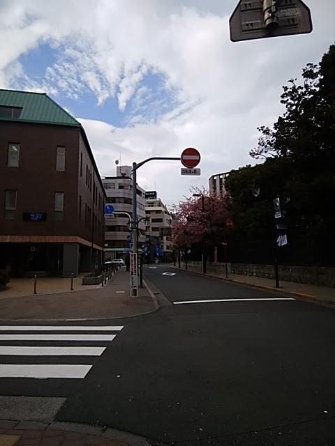 f:id:kaon-yokegawa:20190321093008j:plain