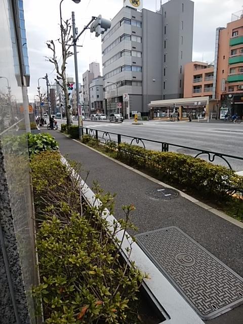 f:id:kaon-yokegawa:20190321112501j:plain