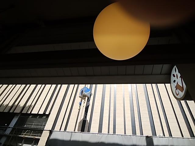 f:id:kaon-yokegawa:20190322101515j:plain