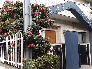 f:id:kaon-yokegawa:20190328143404j:plain