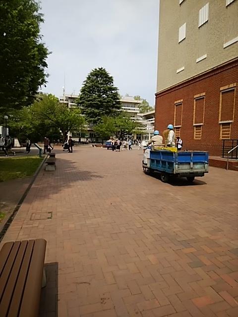 f:id:kaon-yokegawa:20190422102129j:plain