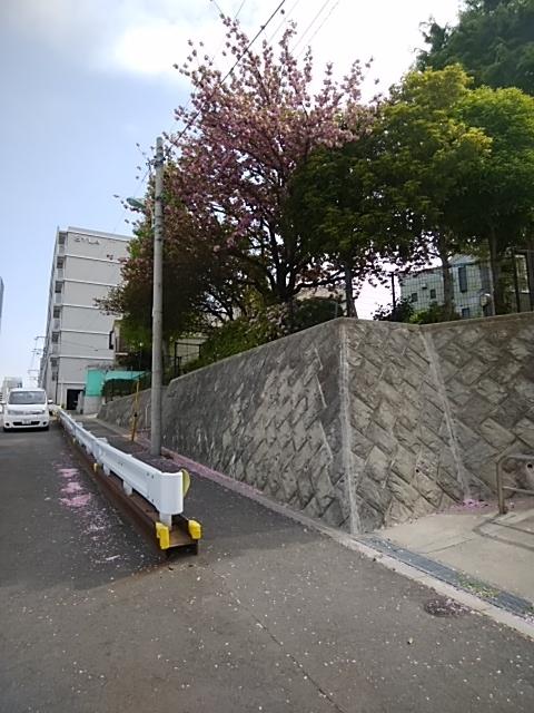 f:id:kaon-yokegawa:20190423091903j:plain