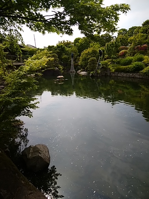 f:id:kaon-yokegawa:20190518141227j:plain