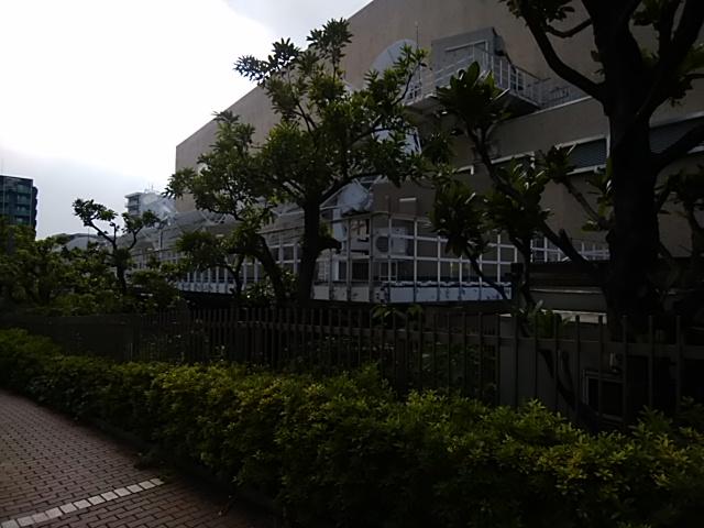 f:id:kaon-yokegawa:20190608154448j:plain