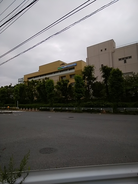 f:id:kaon-yokegawa:20190623111740j:plain