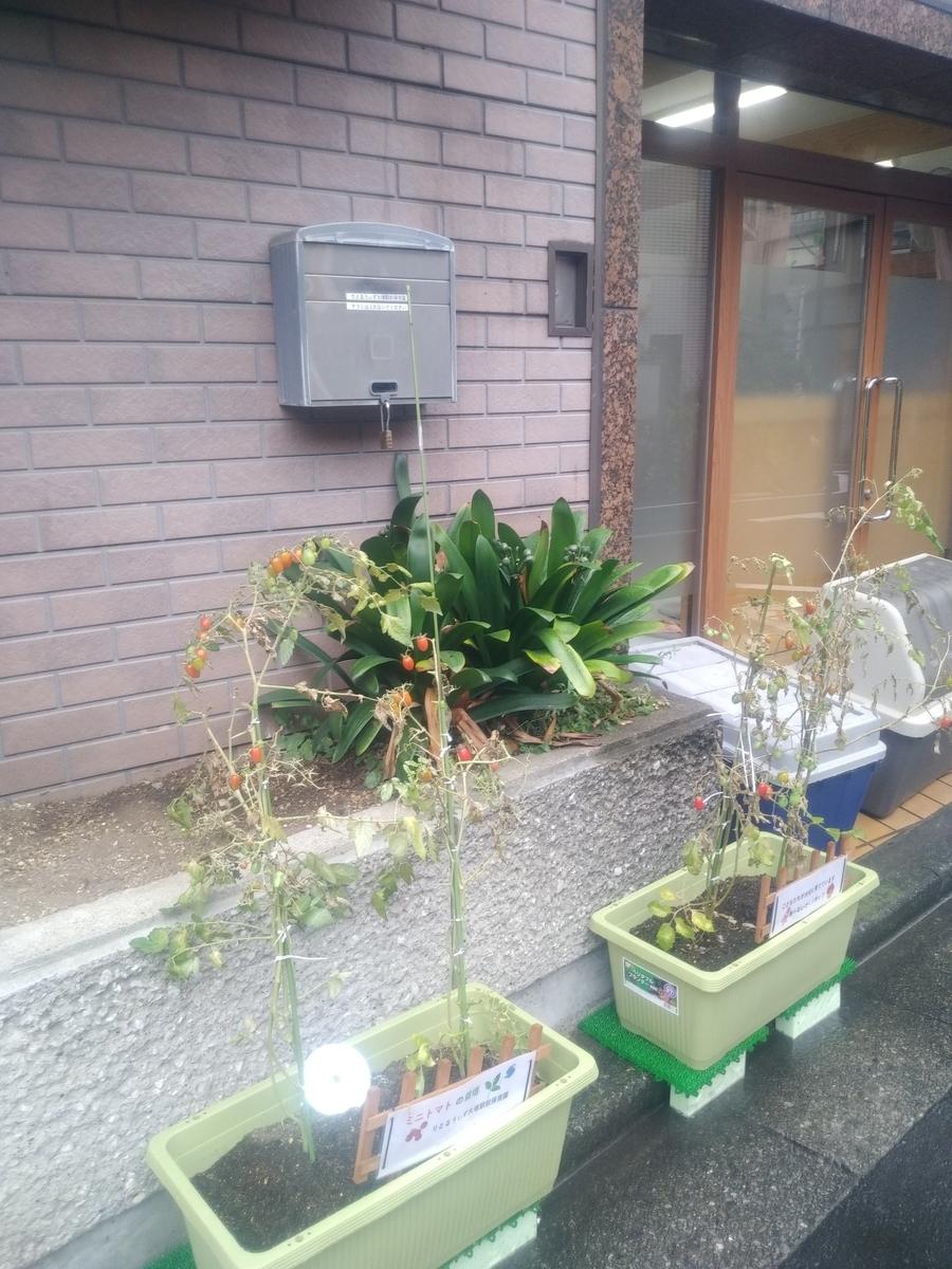 f:id:kaon-yokegawa:20191011113643j:plain