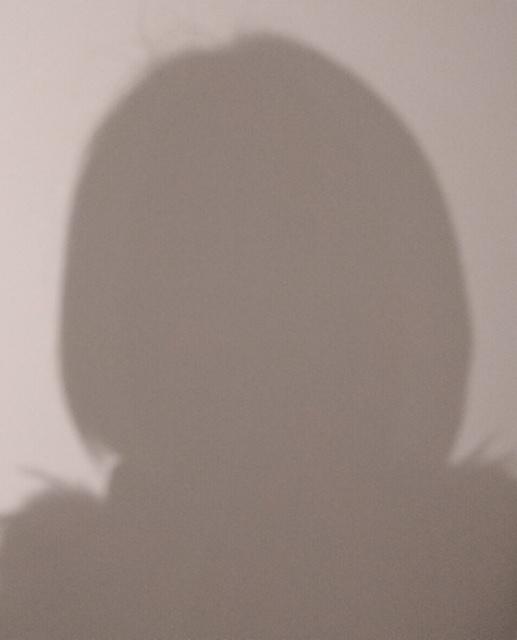 f:id:kaon-yokegawa:20200102143659j:plain