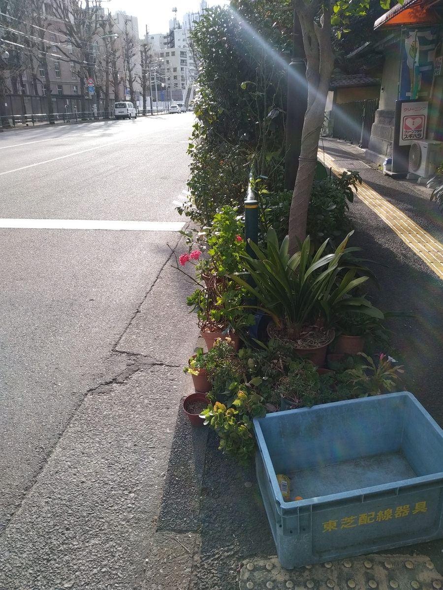f:id:kaon-yokegawa:20200208151143j:plain