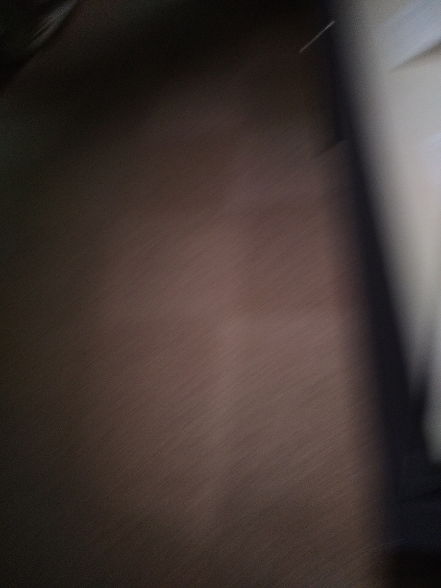 f:id:kaon-yokegawa:20200210160114j:plain