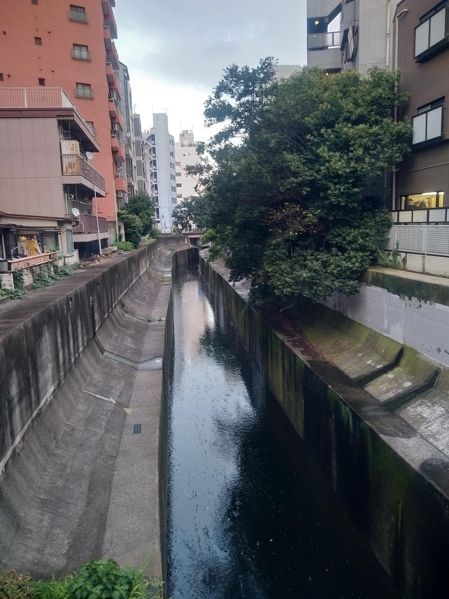 f:id:kaon-yokegawa:20200321160908j:plain