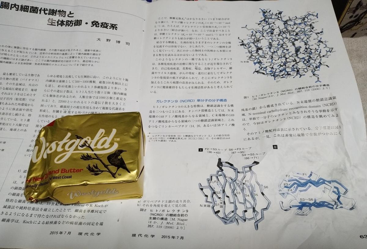 f:id:kaon-yokegawa:20200323075054j:plain
