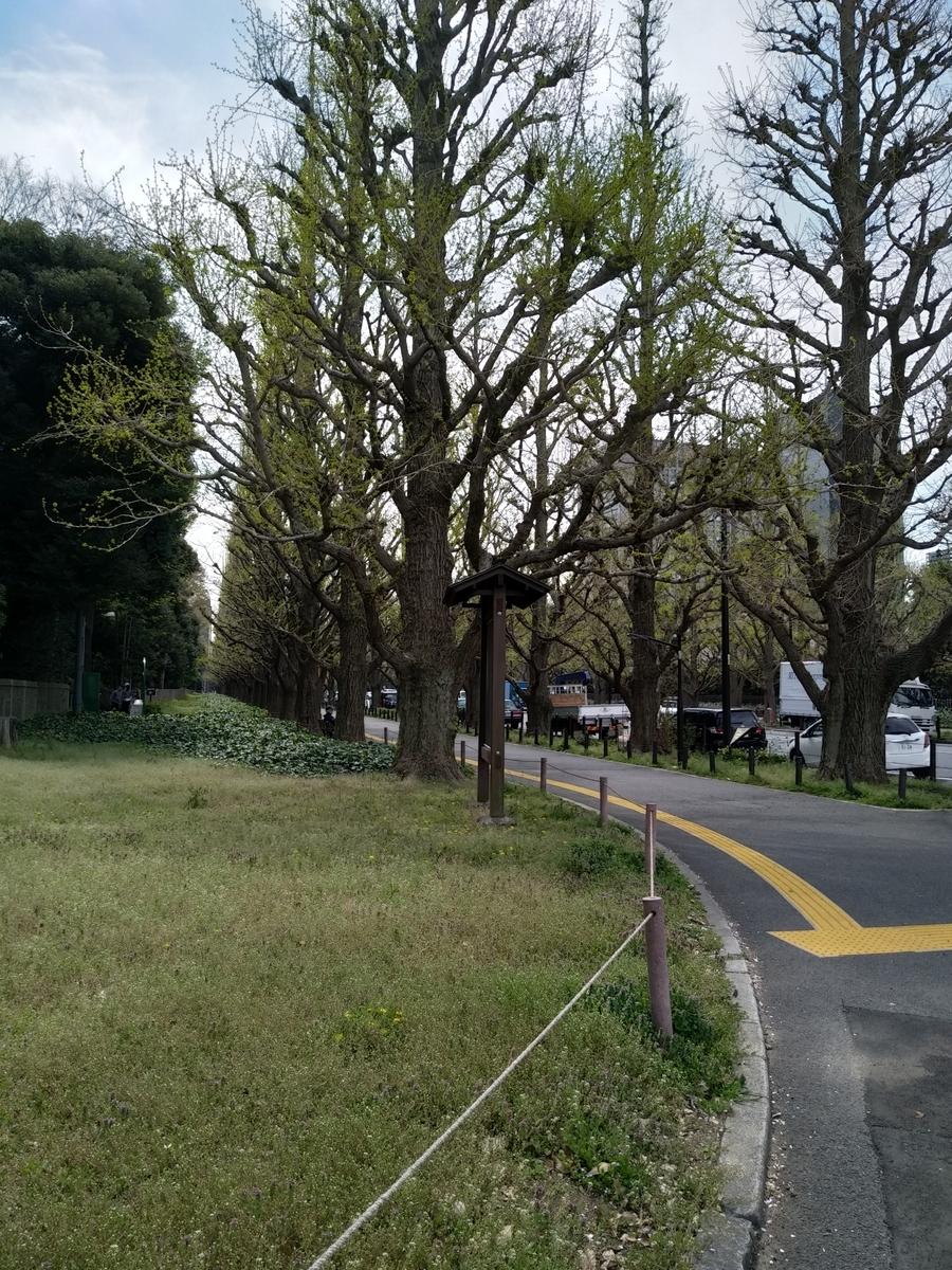 f:id:kaon-yokegawa:20200407104350j:plain