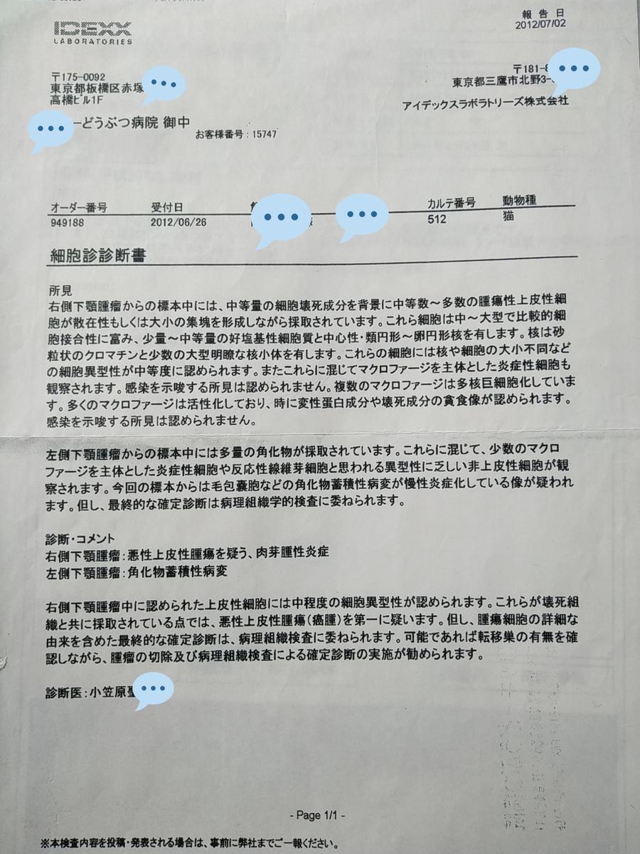f:id:kaon-yokegawa:20200409124855j:plain