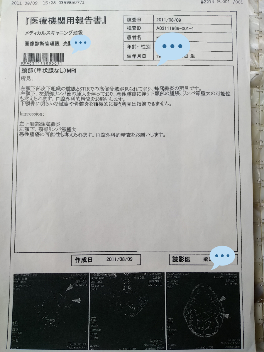 f:id:kaon-yokegawa:20200409130034j:plain