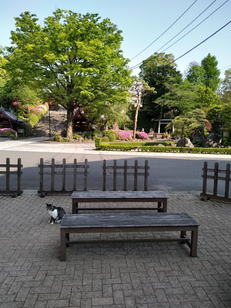 f:id:kaon-yokegawa:20200430080015j:plain
