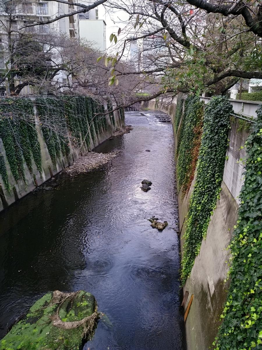 f:id:kaon-yokegawa:20201102114553j:plain