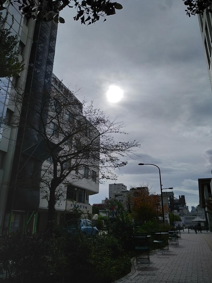 f:id:kaon-yokegawa:20201120123137j:plain