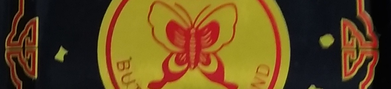 f:id:kaon-yokegawa:20201122183559j:plain